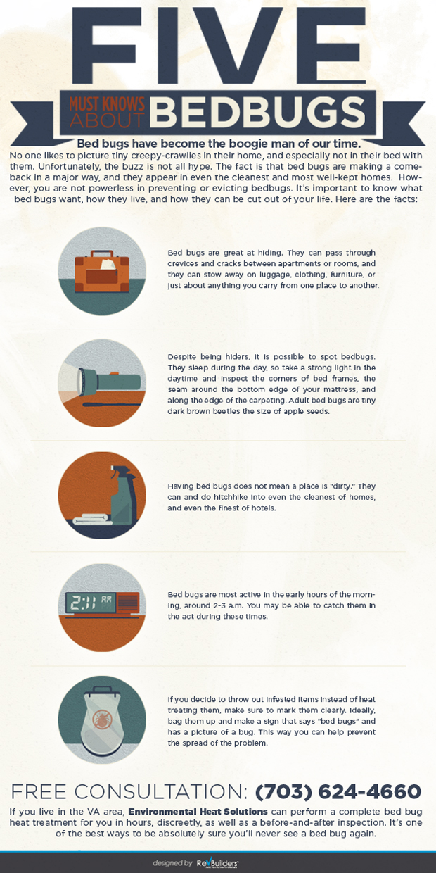 Bed_Bugs_Infographic